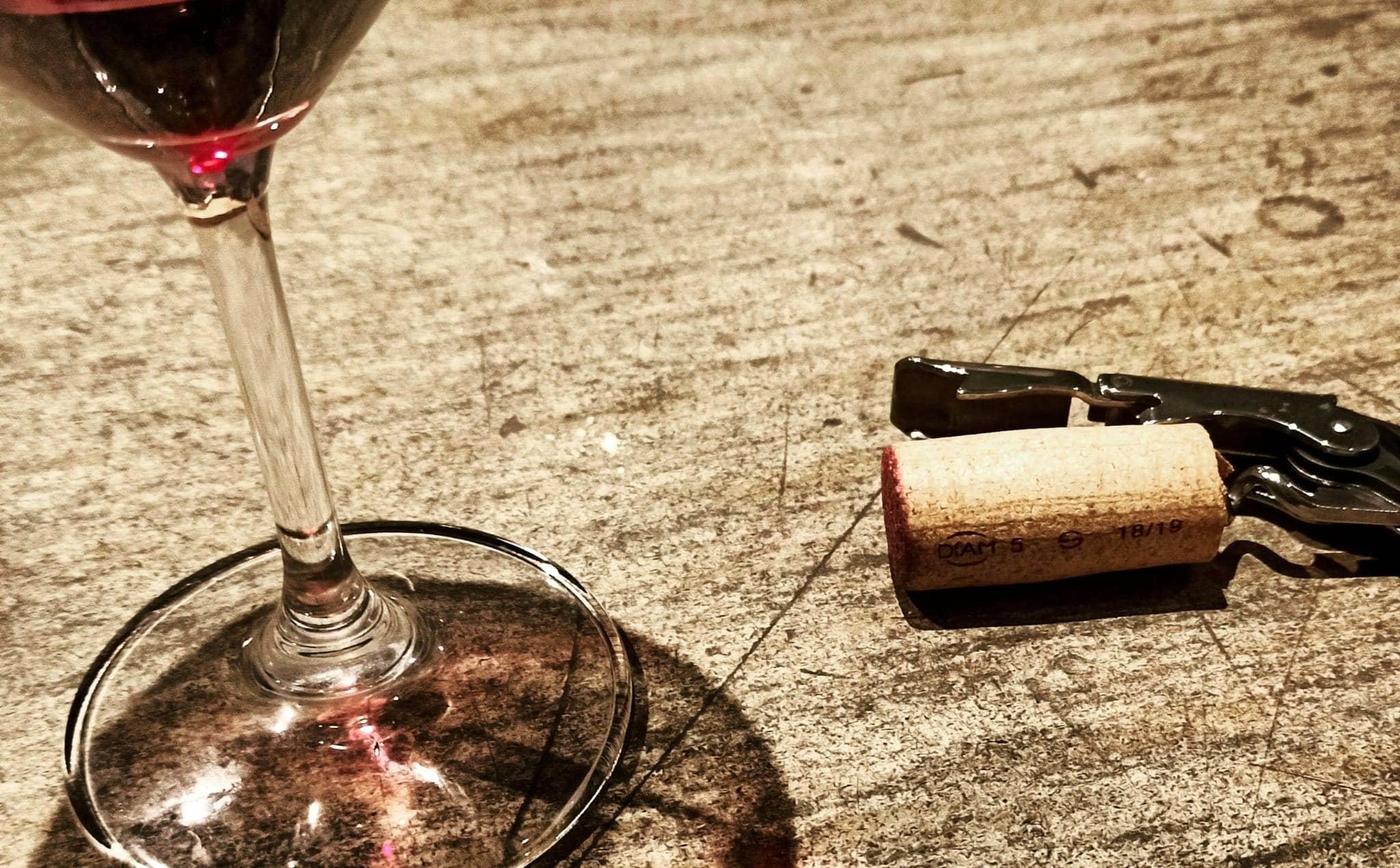 vino mau-2