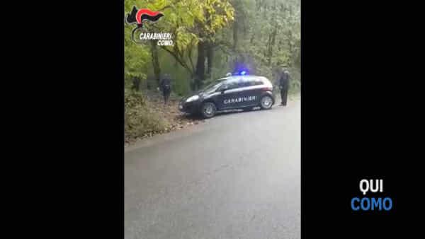 Il bosco come un supermarket della dorga: il video dei sei arresti