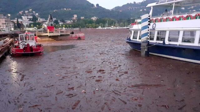 Como, line navigation services on the lake suspended thumbnail