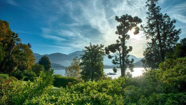 Lago di Como, Villa Carlotta: gli eventi di gennaio e febbraio