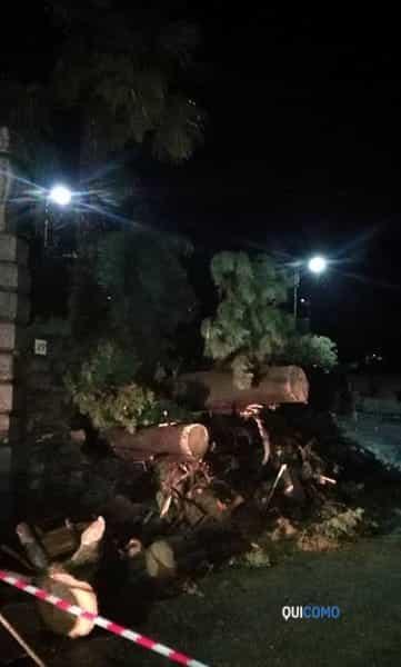 Alberi caduti a Carate Urio: strada bloccata
