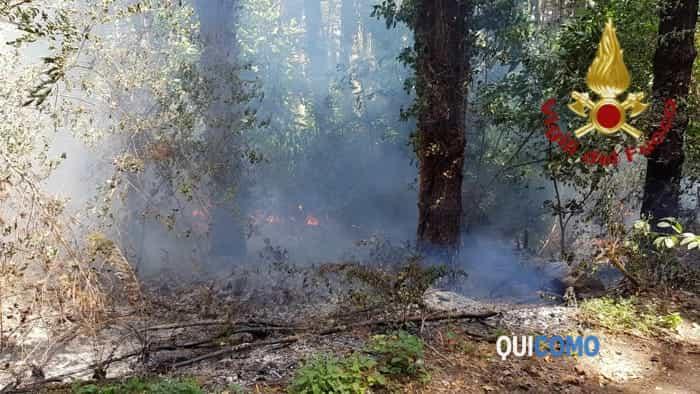 Incendio a Cassina Rizzardi (30 luglio 2019) 3